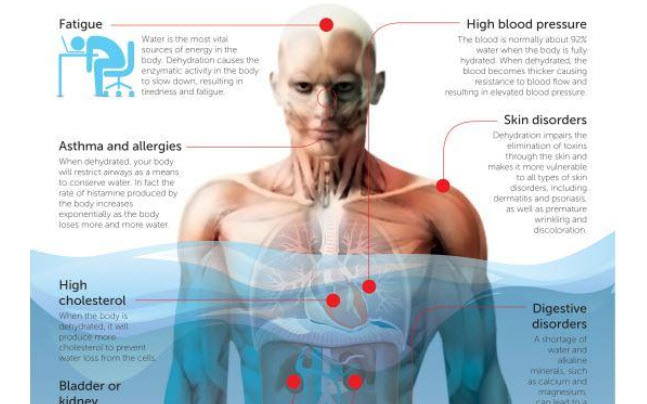 Dehydration Negatively Affects Your Mind And Body